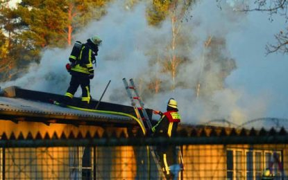 MIGRANT CAMP BLAZE: 'Refugees set light to mattress' in huge fire