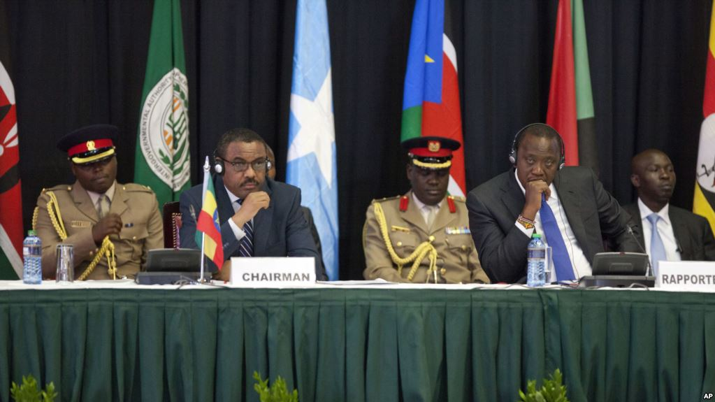 IGAD Leaders to Help Send Refugees Back Home