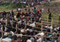 Bangladesh: Plan to relocate hundreds of Rohingya to remote island must be dropped