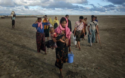 'Saudi Arabia won't send Rohingya back to Bangladesh'