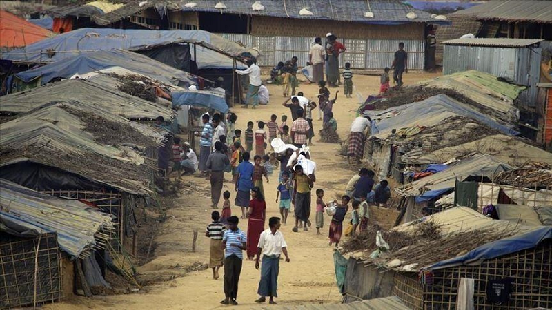 Rohingya want to dethrone junta, return to Myanmar