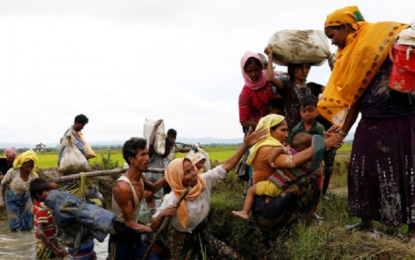 Rohingya Refugee Crisis: Putting the pieces of the puzzle together